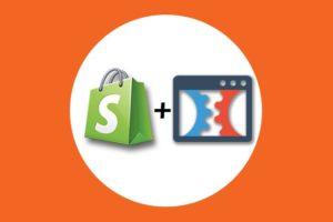 eCommerce: Shopify Dropshipping, Clickfunnels, Facebook Ads