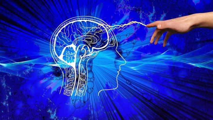 Fully Accredited Certification in Neuroplasticity Practice -Course For Free