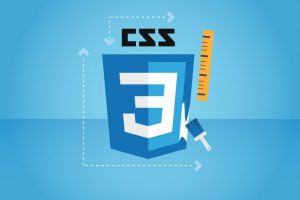 CSS - The Complete Guide 2020 (incl. Flexbox, Grid & Sass) Course Site Learn CSS for the first time or brush up your CSS skills and dive in even deeper. EVERY web developer has to know CSS.