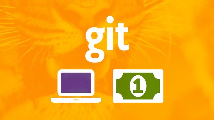 Git a Web Developer Job: Mastering the Modern Workflow Course Site Learn Git, GitHub, Node.js, NPM, Object-oriented JavaScript, ES6, webpack, Netlify, BEM and Job Interview Tips