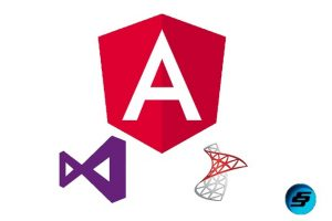 Learn Angular 8 by creating a simple Full Stack Web App Course Catalog Practical based approach to learn Angular 8 by creating a simple full stack app using Angular 8 and Web API