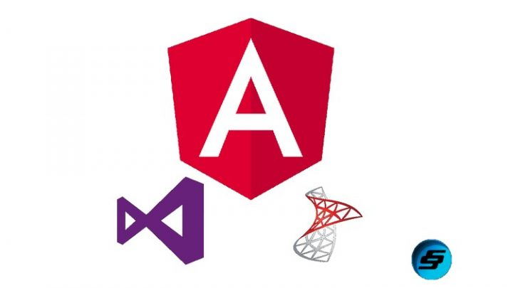 Learn Angular 8 by creating a simple Full Stack Web App Course Practical based approach to learn Angular 8 by creating a simple full-stack app using Angular 8 and Web API