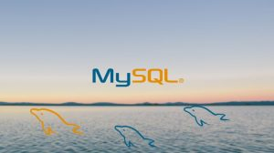 MySQL Database Training for Beginners Course - Learn MYSQL Database Learn MySQL and Take Your Web Development to the Next Level.