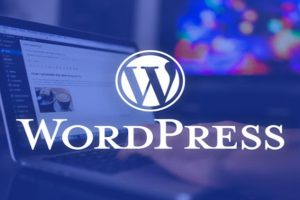 The Complete WordPress Website Business Course in 2020 In 2020, build a beautiful responsive WordPress site that looks amazing on all devices. No programming skills required