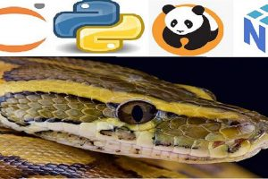 Python Bootcamp for Data Science 2021 Numpy Pandas & Seaborn Learn to use NumPy, Pandas, Seaborn , Matplotlib for Data Manipulation and Exploration with Python
